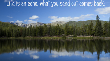 Perspective: Life is an echo